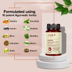 Jiva Store - Diatrin-Ingredients